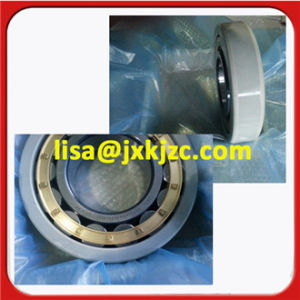 Nu211ECM/C3VL0241 China rodamientos aislados eléctricamente
