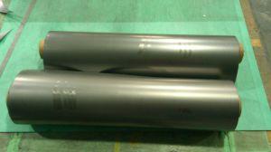 Grafiet Blad met Tanged Geperforeerd Metaal (SS, Cs, Ni)