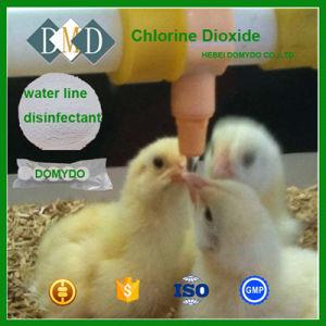 Het Poeder van het Dioxyde van de chloor voor de Dierlijke Lijn van het Drinkwater desinfecteert