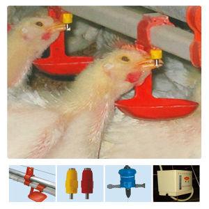 Conjunto completo de equipamento automático de aves de capoeira para a exploração de aves de capoeira