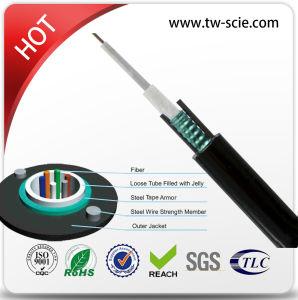 62,5/125 mm GYXTW Antena do tubo central do cabo de fibra óptica