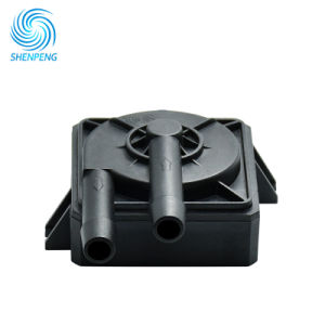 Gleichstrom-Mini12 Volt-Pumpe für LED-abkühlende Zirkulation