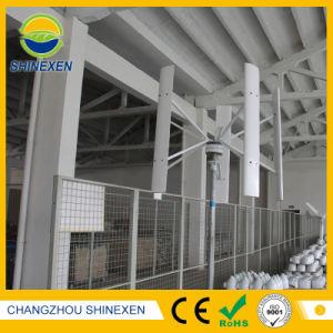 100W 12V/24V Home Aerogenerador o generador eólico