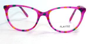 Speciaal Ontworpen Metaal Eyewear (FLA1702)