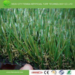 Certificado SGS Césped artificial para jardines