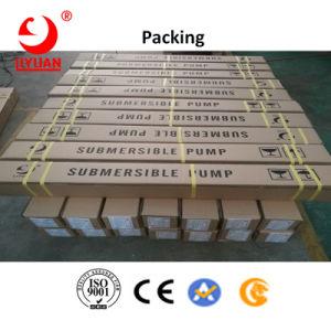 La serie sg solares sumergibles bombas de motor de 4 pulg.