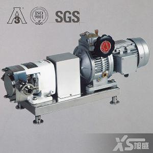 En acier inoxydable de la pompe du rotor du variateur en continu