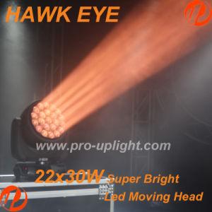Ojo de halcón 22*40W RGBW 4en1 Ojo B-K10 Cabezal movible LED