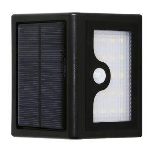 Jardim de LED de luz solar para Piscina