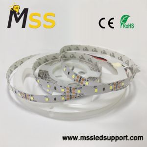 3-5 anni della garanzia di rendimento elevato SMD2835 60LEDs/M LED di indicatore luminoso di striscia flessibile