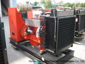50kw Biogas 발전기