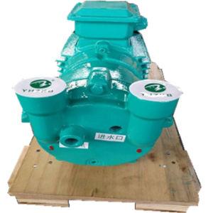 2BV2 070 de Vacuümpomp van de Ring van de Vloeistof/van het Water voor de Lijn van de Uitdrijving van de Pijp