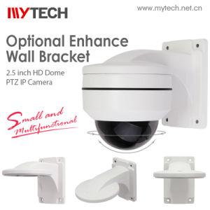 Zeer Kleine IP van de Veiligheid van kabeltelevisie PTZ van de Visie van de Nacht Kleinste Camera