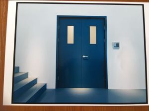 Vitrage extérieur nominal de la sécurité incendie rincer l'entrée de porte en acier avec verrou d'échappement