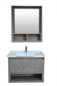 La nuova parete di modo di disegno ha appeso il Governo di stanza da bagno Tc37312