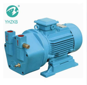 オートクレーブのためのYhzkb上海Yulongの殺菌機械/真空ポンプ