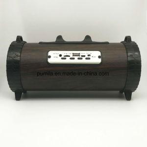 Batería recargable del portátil inalámbrico de alta calidad con Micrófono Altavoces y luces LED