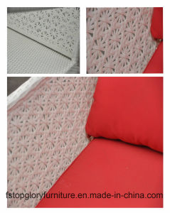PET Rattan u. Aluminium-Möbel, im Freienrattan-Sofa (TG-046)