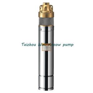 Well-Know 4skm profunda bem submersíveis bomba de água (4SKM150)