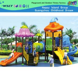 De OpenluchtApparatuur van uitstekende kwaliteit van de Speelplaats voor Kinderen (hc-5401)