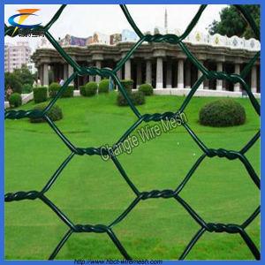 中国の最上質PVC Gabion金網