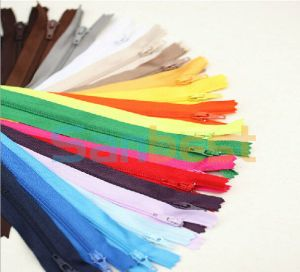 Lady Clothes를 위한 100% 높은 Quality Colorful Nylon Zipper