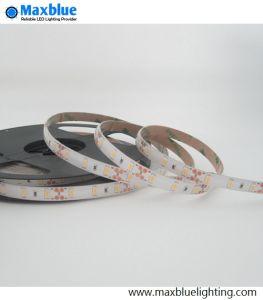 Resistente al agua IP65 300 LED SMD5730 TIRA DE LEDS