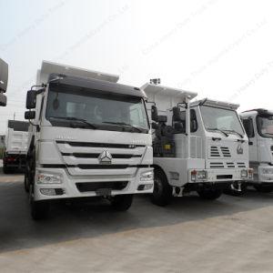 Sinotruk HOWO 30tons 10 바퀴 336/371HP 덤프/팁 주는 사람 트럭