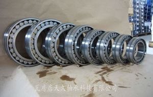 Double-Row roulement à rouleaux cylindriques