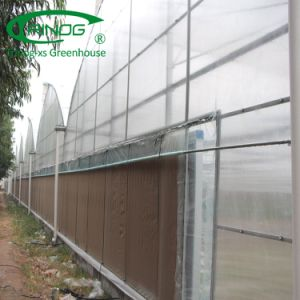 Anti-uv plastic filmserre voor het plantaardige groeien