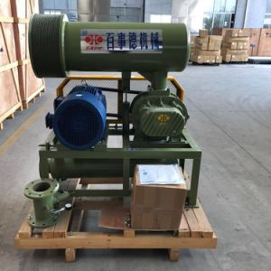 10kpa - 물 처리를 위한 80kpa 3 로브 루트 공기 송풍기 Bk6008