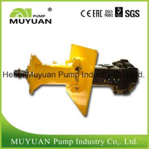 Pompa di pozzetto verticale resistente all'uso del preparato di carbone della singola fase