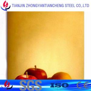 De kleur bedekte het Blad van Roestvrij staal 201/1.4371 voor Decoratie in Roestvrij staal met een laag