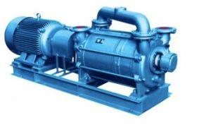 Welt beliebter weithin Wasserring-Vakuumpumpe für die Vakuumkonzentration