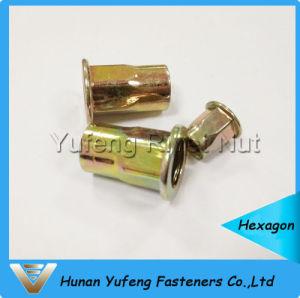 Zinc jaune plaquant la noix principale plate de rivet avec demi de corps d'hexagone