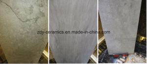 建築材料の無作法な磁器のタイル