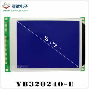 LCM320 * visualizzazione della matrice a punti 240