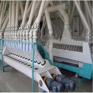 Trigo automático Molino de Harina de Maíz Arroz harina Fresadoras