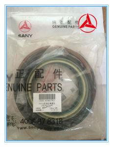 Kits de réparation de joint d'huile de Sany de vérin de flèche de pelle