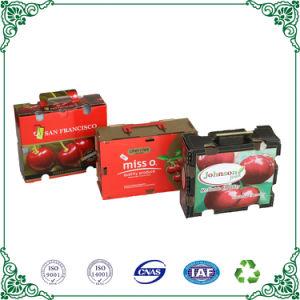 Contenitore impaccante piegante impaccante riciclato di frutta del contenitore di regalo di carta