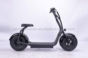 Balance de alto nivel de 1200W Citycoco Scooter 60V20A Fat Harley de neumáticos