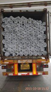 Tipo filtro del Johnson dell'acciaio inossidabile 304 da acqua per la perforazione buona