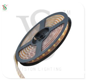 Indicatore luminoso di nastro di DC12V Epistar IP20/IP44/IP68 5050 LED