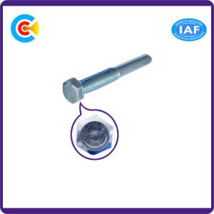 DIN/ANSI/BS/JIS Carbon-Steel 또는 Stainless-Steel 외부 육각형 헤드는 기계 나사를 손 뒤튼다