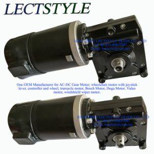 Lona de camión volquete DC Motor, Motor de la máquina de captura y hermético motorreductor con 12V 250W
