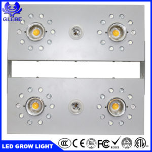 Crecen las luces LED de alta potencia 1000W para el cultivo comercial Luz LED crecer crecer