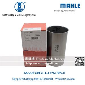 日立掘削機(1-11261385-0)のためのMAHLE ZX200 6BG1シリンダーはさみ金
