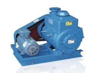 Vacuum CoatingのためのVane Rotary Vacuum Pumpの滑走