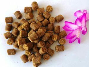 Droge Voedsel van de Hond van de Hond van de Rang van het Voedsel van de Fabrikant van de hondevoer het Favoriete