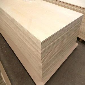 1220X2440mm Handelsbirken-Furnierholz mit guter Qualität